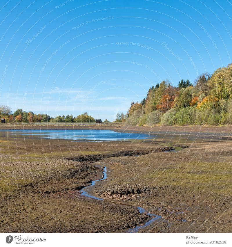 Ausgetrocknet Natur Landschaft Wasser Wolkenloser Himmel Herbst Klimawandel Dürre Baum Wald Berge u. Gebirge Harz Teich See Mittlerer Pfauenteich