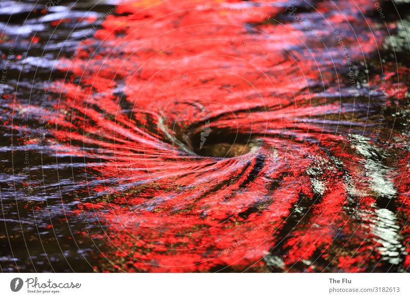 Lichtstrudel Wasser Wellen drehen blau rot schwarz weiß Brunnen Reflexion & Spiegelung Wasserwirbel glänzend kreisen fließen Loch Nacht Abfluss konzentrisch
