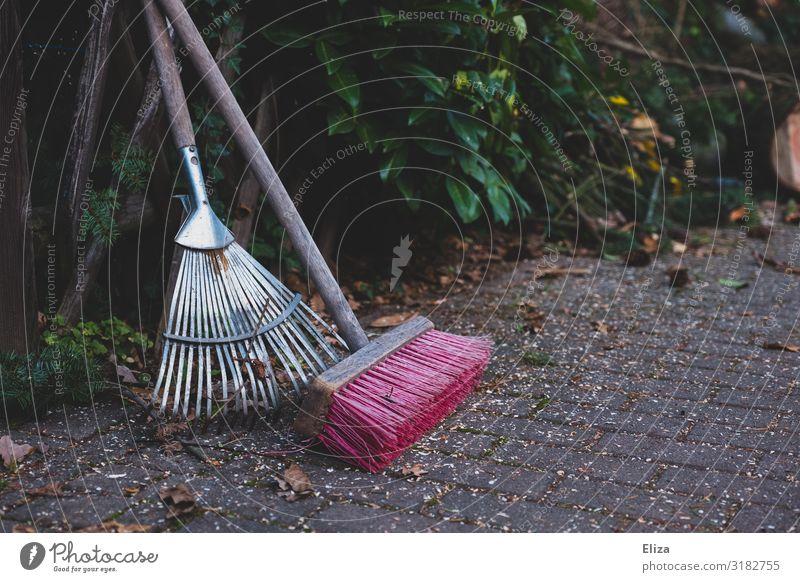 rechen und fegen Blatt Garten Arbeit & Erwerbstätigkeit Ordnung Bürgersteig Gartenarbeit Besen Gärtner Kehren Rechen Gartengeräte