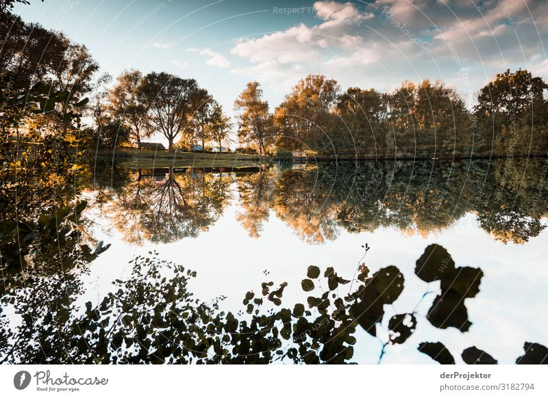Sonnenuntergang am Regenrückaltebecken in Garbsen Ferien & Urlaub & Reisen Natur Pflanze Landschaft Baum Erholung Tier Ferne Herbst Umwelt Tourismus Garten