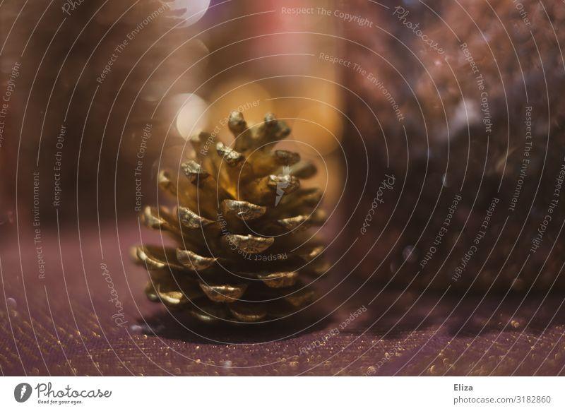 Tannenzapfen Weihnachten & Advent Kitsch Dekoration & Verzierung Weihnachtsdekoration glänzend schön rosa Stimmung Farbfoto Gedeckte Farben Innenaufnahme