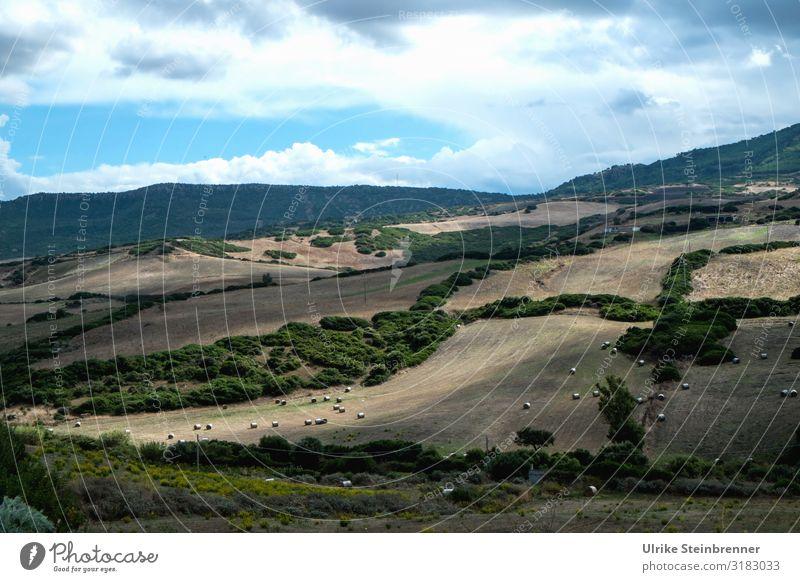 Herbstliche Landschaft auf Sardinien Felder Acker Heuballen Strohballen Bäume Hecken Wald Berge Landwirtschaft Wolkenhimmel Einsamkeit einsam Ruhe Sonnenlicht