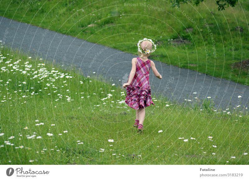 Unbeschwert toben Natur Sommer Pflanze grün weiß Landschaft Blume Wärme Umwelt natürlich feminin Wiese Glück Gras Garten Park