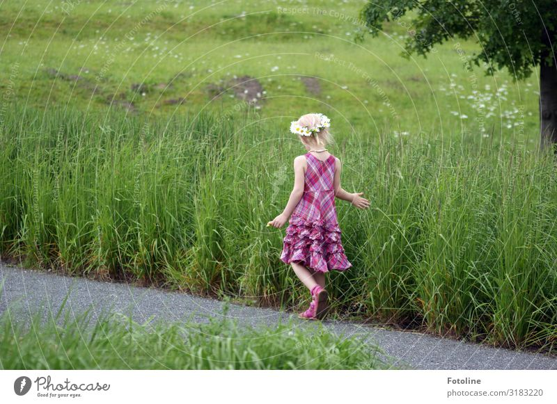 1,2,3,4,5... viele Kind Mensch Natur Sommer Pflanze Landschaft Hand Baum Blume Mädchen Beine Umwelt feminin Wiese Gras klein