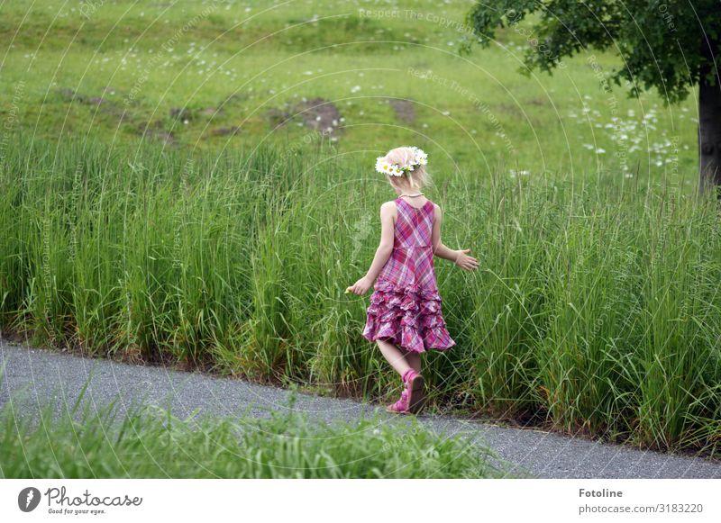 1,2,3,4,5... viele Mensch feminin Kind Mädchen Kindheit Rücken Arme Hand Finger Beine 3-8 Jahre Umwelt Natur Landschaft Pflanze Urelemente Erde Sommer Baum Gras