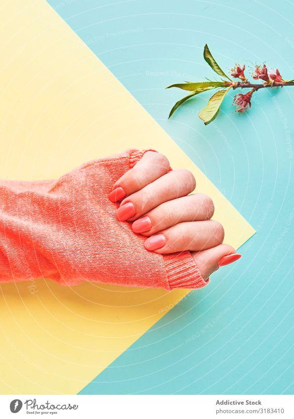 Getreide weibliche Hand mit rosa Maniküre Stil Farbe Pullover Pfirsich Angebot Frühling Ast Zweig Mode modern hell Nägel Beautyfotografie Poliermittel