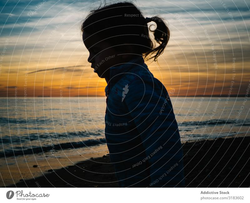 kleine Mädchensilhouette am Strand Sonnenuntergang Silhouette Kind Außenaufnahme Natur Mensch Glück Sommer Wasser Lifestyle Fröhlichkeit Freude