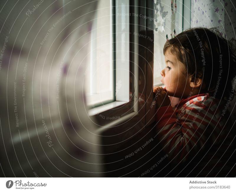 Kind schaut durchs Fenster. Peering klein Tag Blick Unwetter heimwärts beobachten Mensch Regen Außenaufnahme Einsamkeit Haus Innenaufnahme Licht Glas Ausdruck