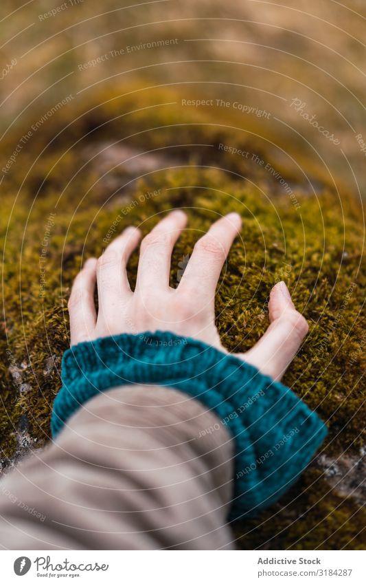 Frau Hand auf Moos berühren Stein ländlich Freiheit Ferien & Urlaub & Reisen Abenteuer