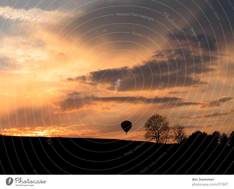 bis ans Ende der Welt Himmel Baum Sonne Wolken Sträucher Ballone Abenddämmerung