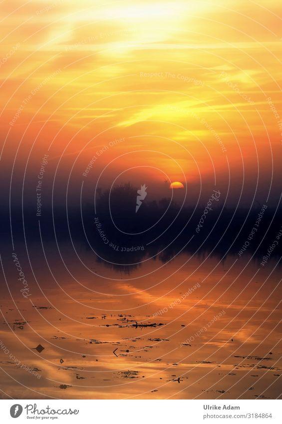 Morgenerwachen Design Wellness harmonisch Wohlgefühl Zufriedenheit Erholung ruhig Meditation Spa Tourismus Ferne Naturschutzgebiet Tapete Trauerkarte