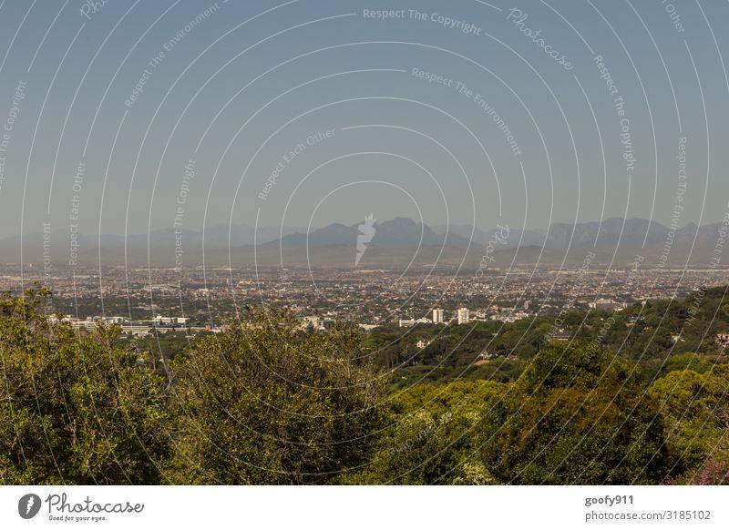 Kapstadt Ferien & Urlaub & Reisen Tourismus Ausflug Abenteuer Ferne Freiheit Sightseeing Städtereise Natur Landschaft Himmel Wolkenloser Himmel Horizont Baum