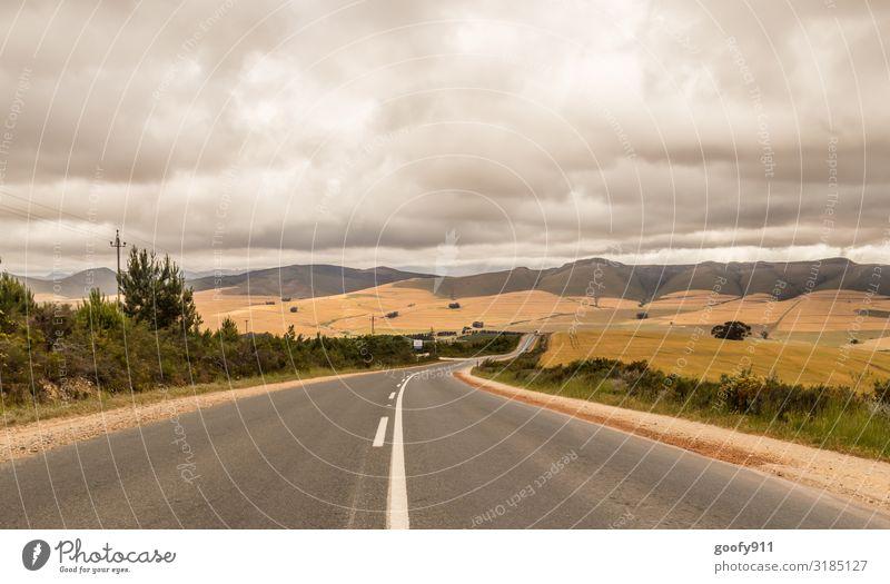 On the Road again... Ferien & Urlaub & Reisen Tourismus Ausflug Abenteuer Ferne Freiheit Safari Expedition Umwelt Natur Landschaft Himmel Wolken Gewitterwolken