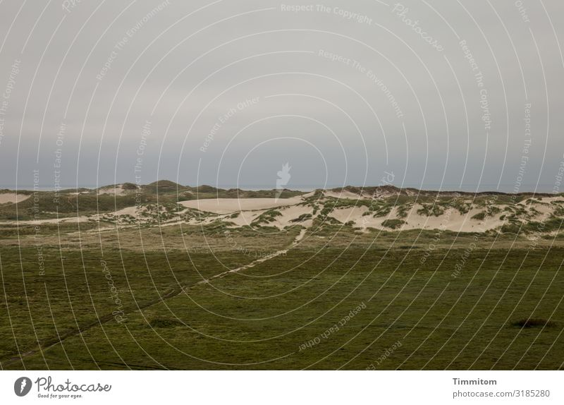Weg zur Nordsee Ferien & Urlaub & Reisen Umwelt Natur Landschaft Pflanze Himmel Wolken Wetter schlechtes Wetter Düne Dänemark Wege & Pfade dunkel natürlich