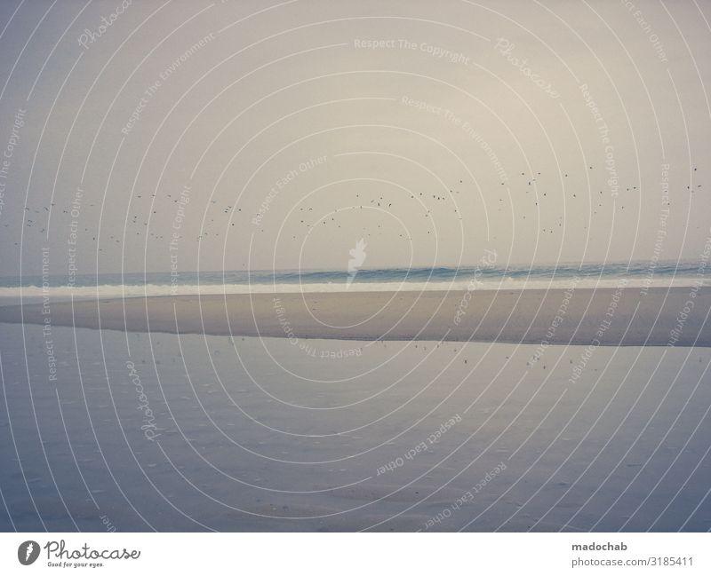Sehnsucht minimalistisch maritim Ebbe Meer Ruhe Wohlbefinden Umwelt Natur Landschaft Klima Küste Strand Bucht Gefühle Stimmung Romantik trösten achtsam