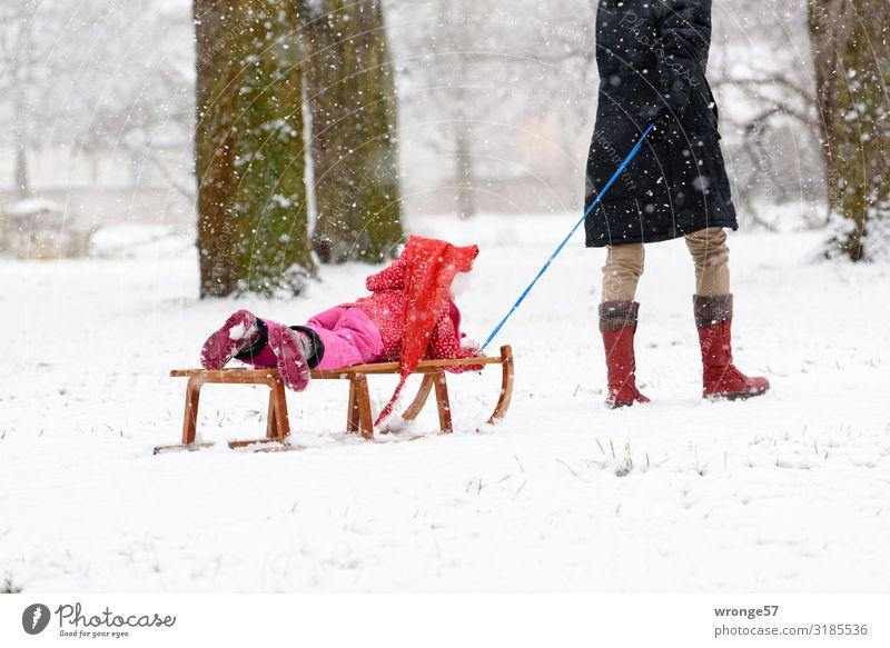 Schnee von gestern Winter Mensch feminin Kind Mädchen Frau Erwachsene Weiblicher Senior Großmutter 2 3-8 Jahre Kindheit 45-60 Jahre 60 und älter kalt blau braun