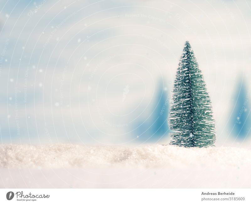 Tannenbaum Weihnachten & Advent ruhig Winter Hintergrundbild kalt Schnee Stil Design Schneefall retro trendy Weihnachtsbaum Ornament