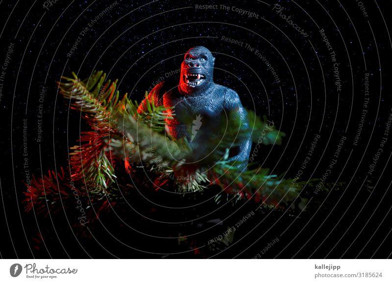 advent-ure Weihnachten & Advent Business Affen Gorilla King Kong Tanne Tannenzweig weihnachtsgeschäft Baumschmuck skurril Nadel sitzen Postkarte Nacht Stern