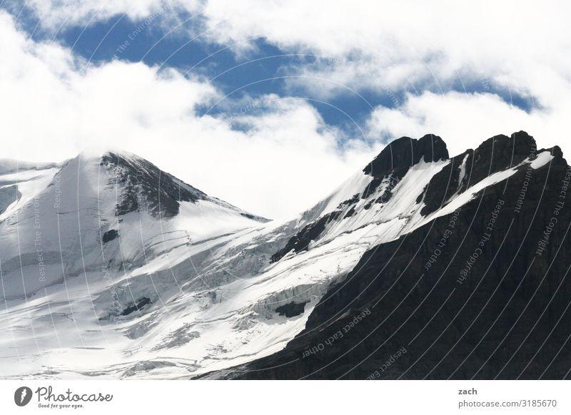 Gletscherreste Landschaft Himmel Wolken Schönes Wetter Schnee Felsen Berge u. Gebirge Rocky Mountains Gipfel Schneebedeckte Gipfel Jasper National Park