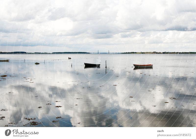 weitsichtig | 100% bewölkt Landschaft Wasser Himmel Wolken Küste Seeufer Fjord Ostsee Meer Insel Dänemark Bootsfahrt Fischerboot Ruderboot Schwimmen & Baden