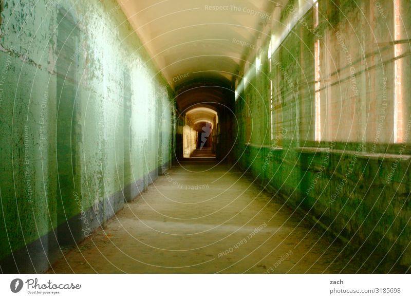 unscharf | Zoom Häusliches Leben Wohnung Haus Renovieren Innenarchitektur Raum Flur Ruine Mauer Wand Fassade Fenster grün Verfall Vergangenheit Vergänglichkeit