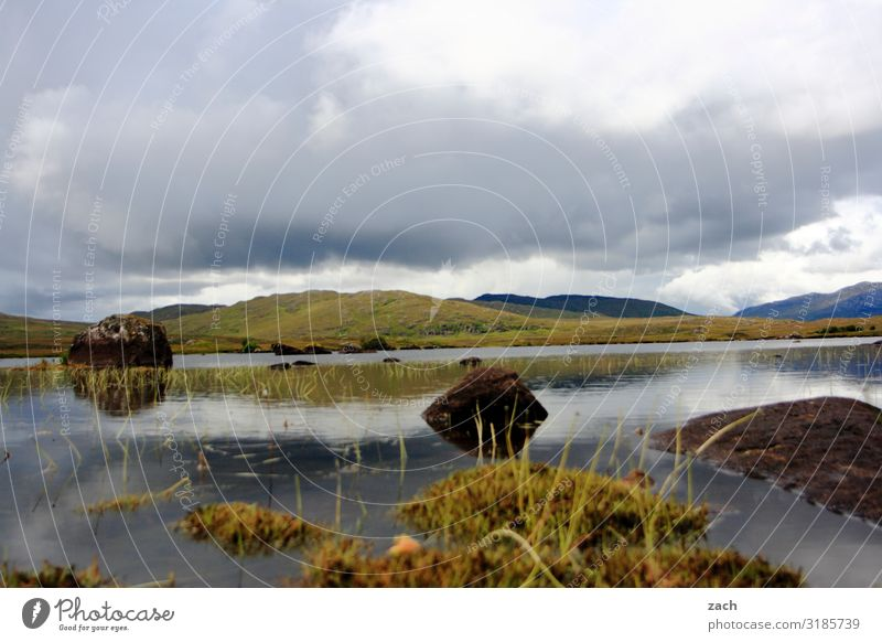 Connemara Natur Landschaft Himmel Wolken schlechtes Wetter Pflanze Gras Sträucher Moos Wiese Feld Hügel Seeufer Flussufer Moor Sumpf Stein braun grün Idylle
