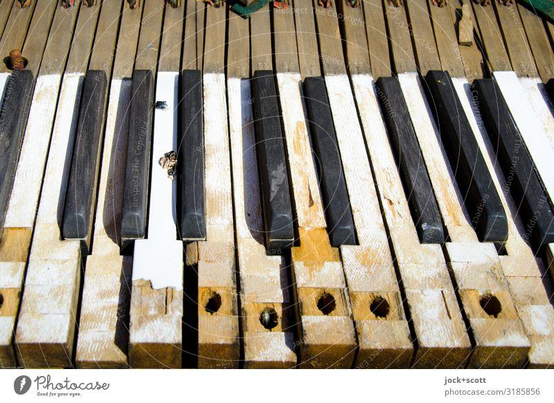 Töne Taste für Taste Klavier Klaviatur Holz Oberflächenstruktur alt dreckig historisch kaputt Inspiration Symmetrie Verfall Vergangenheit Vergänglichkeit