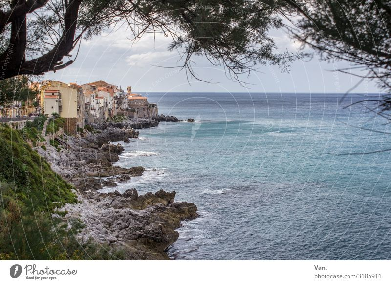 Cefalù² Ferien & Urlaub & Reisen Ferne Natur Landschaft Wasser Himmel Wolken Sommer Schönes Wetter Baum Ast Felsen Wellen Küste Meer Cefalú Sizilien Italien