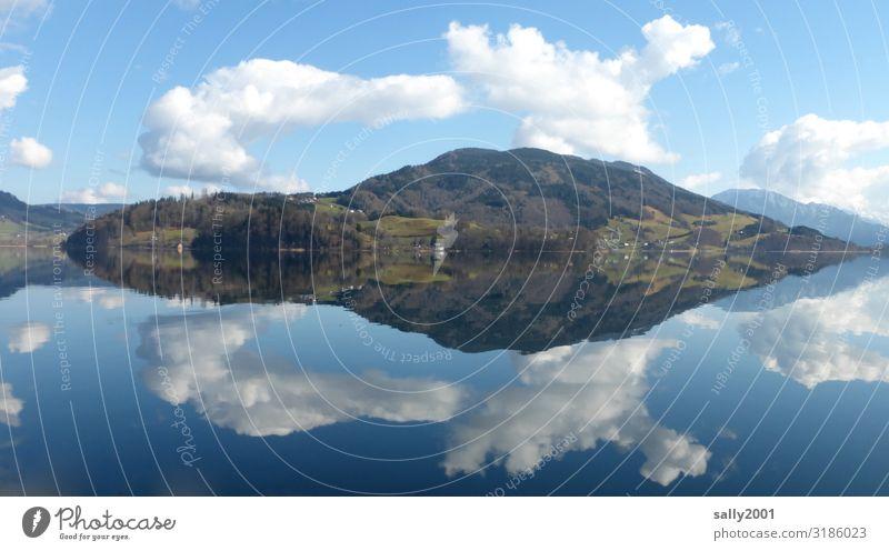 Still ruht der See.. Landschaft Wolken Winter Schönes Wetter Hügel Alpen Berge u. Gebirge Seeufer Mondsee ästhetisch gigantisch natürlich Zufriedenheit