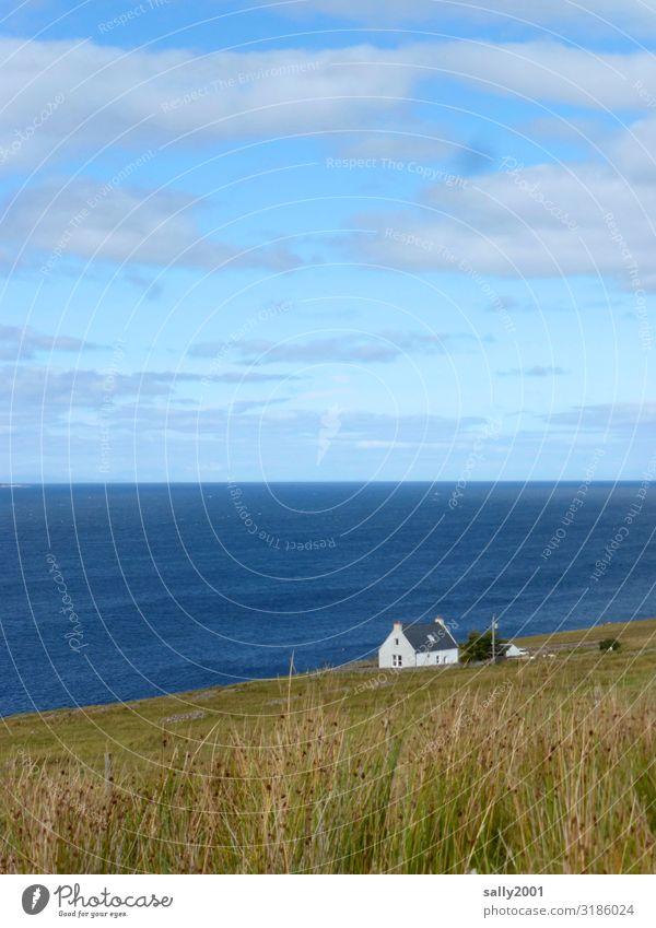 Das Haus am Ende der Welt... Natur Sommer weiß Meer Einsamkeit Ferne Wiese Küste klein außergewöhnlich Häusliches Leben frei authentisch Schönes Wetter Hügel