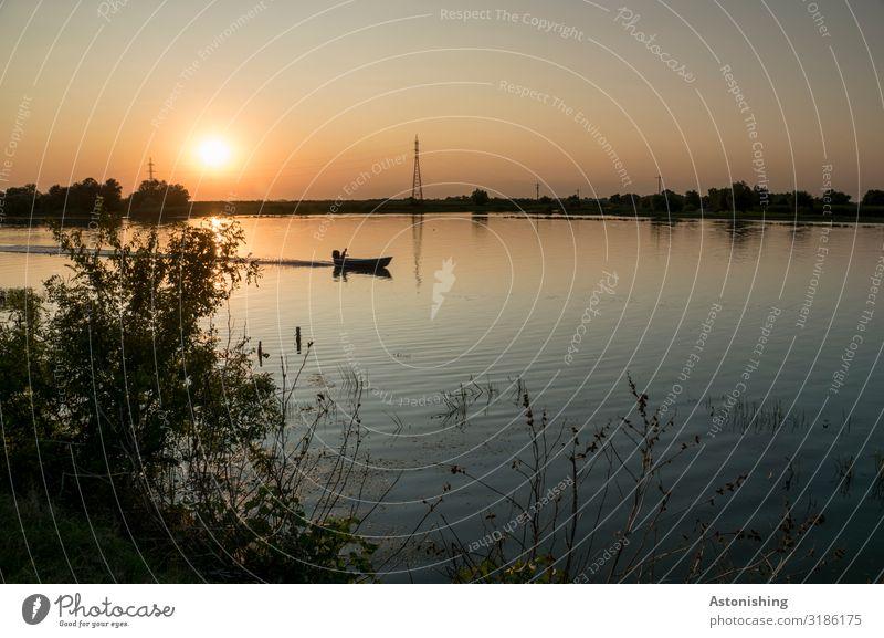 Abend im Donaudelta Energiewirtschaft Umwelt Natur Landschaft Pflanze Wasser Himmel Nachthimmel Sonne Sonnenaufgang Sonnenuntergang Sonnenlicht Sommer Sträucher
