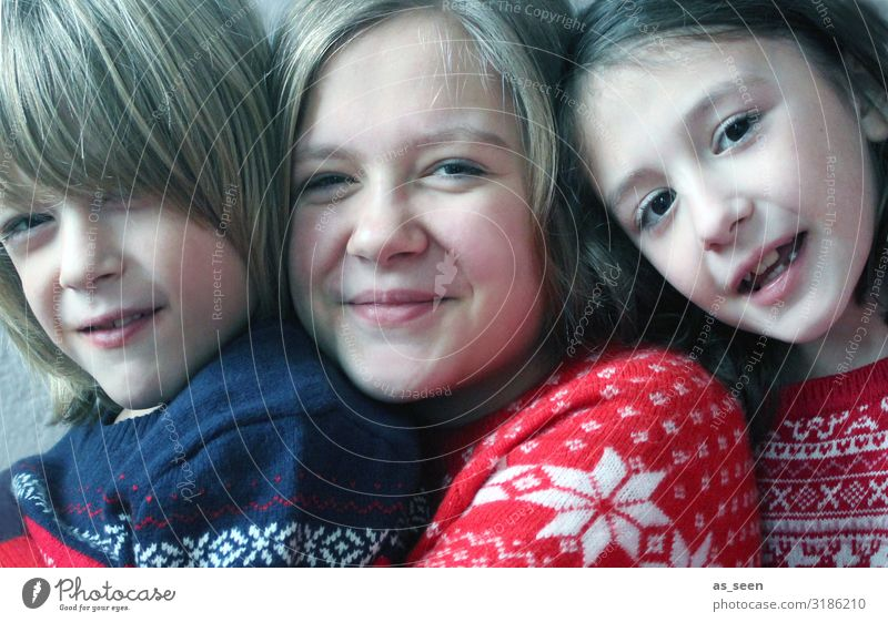 Geschwister Mensch Mädchen Junge Kindheit Leben Gesicht 3 8-13 Jahre 13-18 Jahre Jugendliche Kommunizieren Lächeln lachen Blick authentisch Freundlichkeit