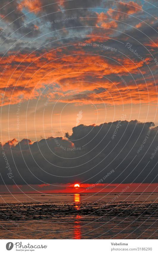 Abend am Watt Sonne Meer Wellen Landschaft Wasser Wolken Sonnenaufgang Sonnenuntergang Küste Nordsee blau mehrfarbig gold grau orange rosa rot schwarz
