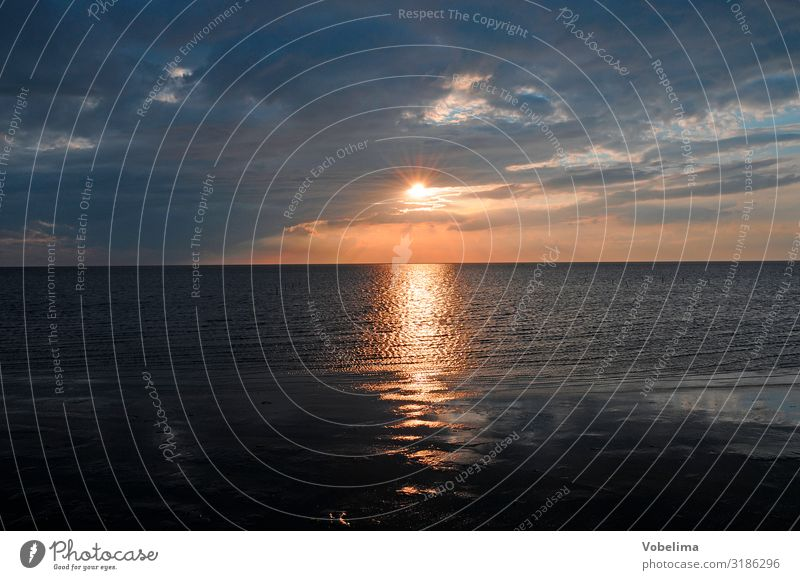 Abend am Watt Sonne Landschaft Wasser Wolken Sonnenaufgang Sonnenuntergang Küste Nordsee blau mehrfarbig gold orange rosa rot schwarz Wattenmeer ab Farbfoto