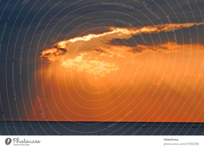 Abendhimmel an der Nordsee Landschaft Himmel Wolken Sonnenaufgang Sonnenuntergang Wetter Küste Meer gelb gold orange rosa rot schwarz Farbfoto Außenaufnahme