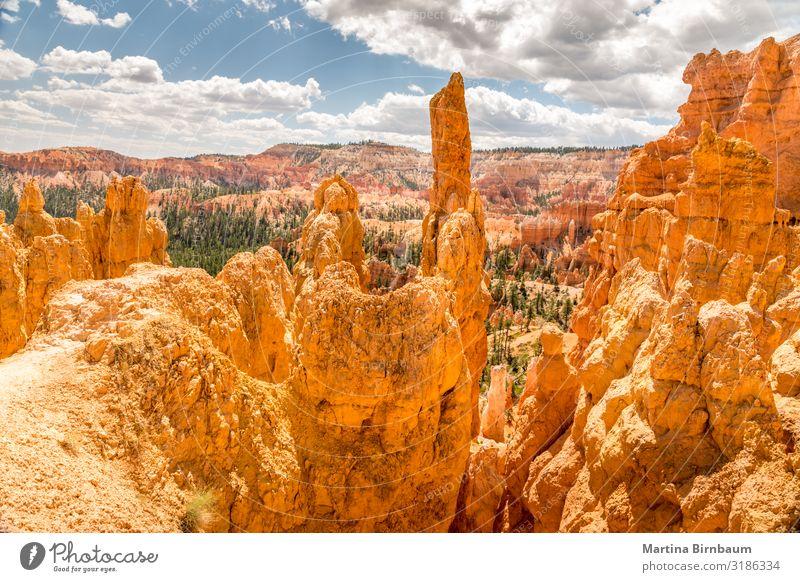 Panoramablick über den Bryce Canyon Utah Ferien & Urlaub & Reisen Berge u. Gebirge Natur Landschaft Himmel Park Felsen Schlucht Denkmal Stein gold rot