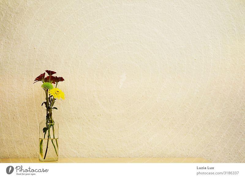 Herbstblumen Dekoration & Verzierung Blume Mauer Wand Freundlichkeit schön gelb grün rot herbstlich altmodisch Vase Farbfoto Gedeckte Farben Innenaufnahme