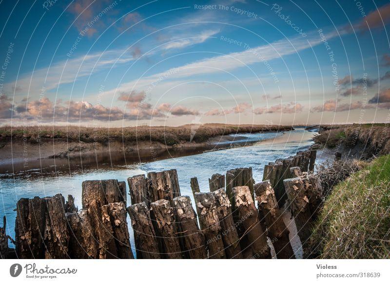 Rømø   ...fairytale III Meer ruhig Wolken kalt Nordsee Bach Sumpf Moor
