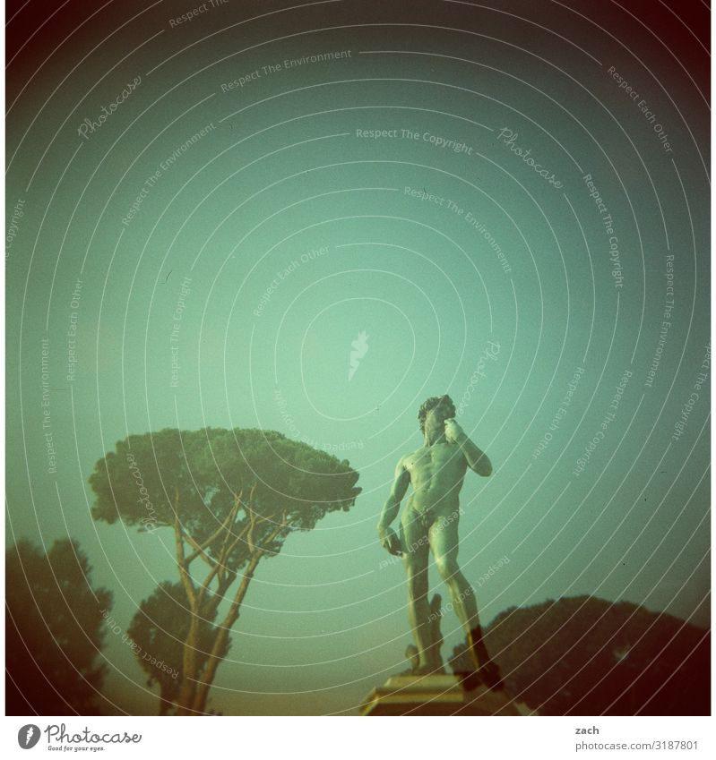 Vorsicht, scharf l David Mensch Himmel Jugendliche Mann Stadt schön Junger Mann Baum Erwachsene Kunst Tourismus maskulin Körper stehen Italien historisch