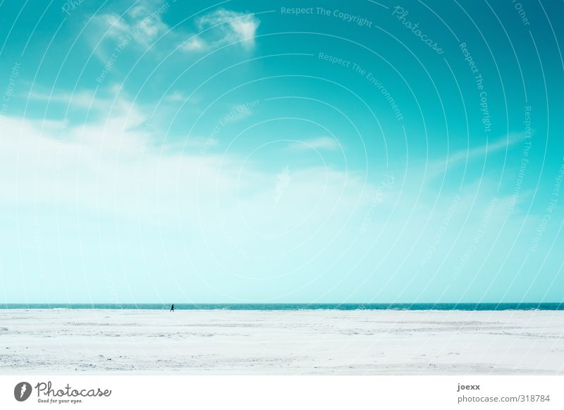 Wilson Mensch Himmel Natur blau weiß Einsamkeit Wolken Strand grau Horizont Schönes Wetter