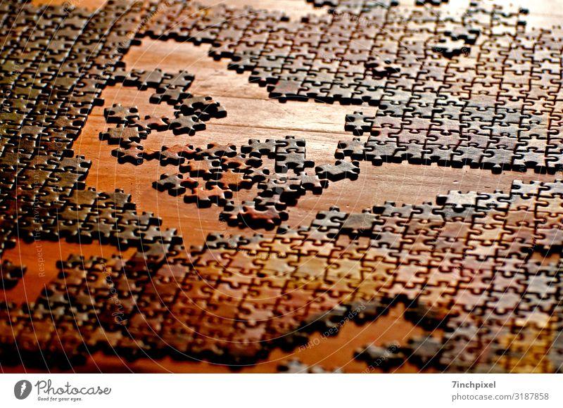 Jigsaw Freizeit & Hobby Spielen Puzzle braun gelb gold Rätsel Freude Farbfoto mehrfarbig Innenaufnahme Menschenleer Kunstlicht Schwache Tiefenschärfe