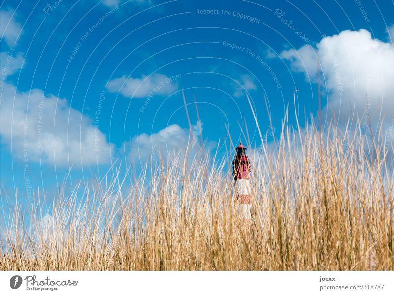 Rot-Weiß Himmel Natur Ferien & Urlaub & Reisen blau alt weiß Pflanze Sommer rot Landschaft Wolken Ferne Freiheit braun hoch Insel