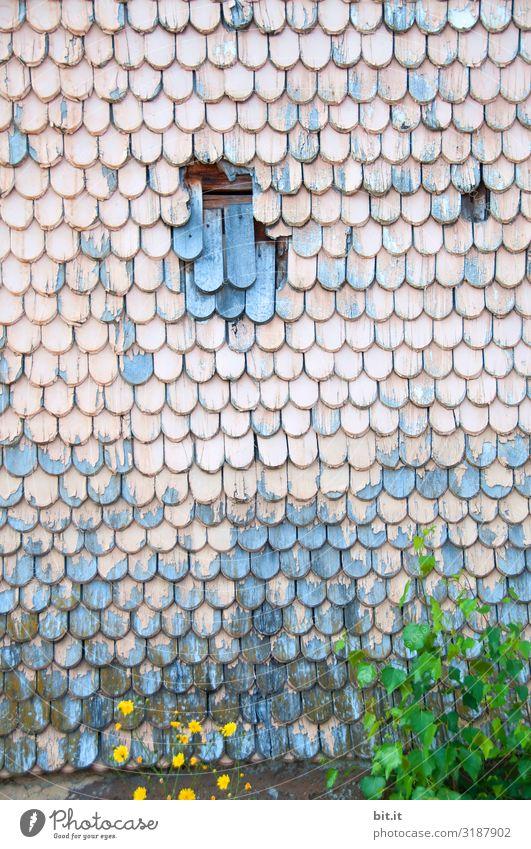Schindlers List. Arbeit & Erwerbstätigkeit Handwerker Baustelle Arbeitslosigkeit Ruhestand Mauer Wand Treppe Sammlung Holz alt kaputt Misserfolg sparsam