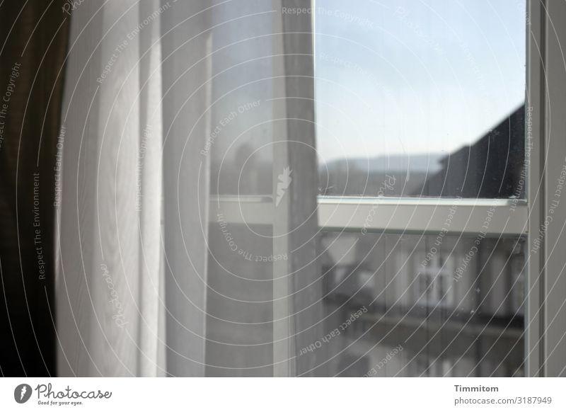 Fenster Himmel Karlsruhe Haus Gardine blau grau schwarz weiß Blick nachdenklich Farbfoto Innenaufnahme Menschenleer Tag