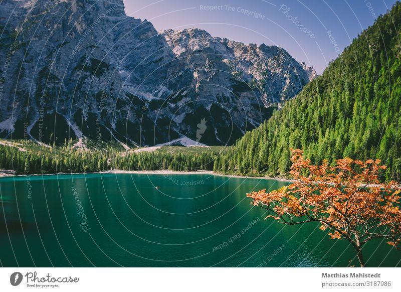 Pragser Wildsee Ferien & Urlaub & Reisen Tourismus Ausflug Abenteuer Berge u. Gebirge wandern Umwelt Natur Landschaft Herbst Dolomiten See Lago di Braie