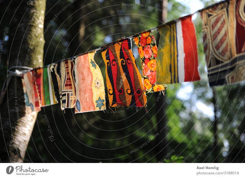 Belgische Gebetsfahnen Optimismus Weisheit Glaube Farbe Religion & Glaube Hoffnung Inspiration Buddhismus Farbfoto Außenaufnahme Sonnenlicht Gegenlicht