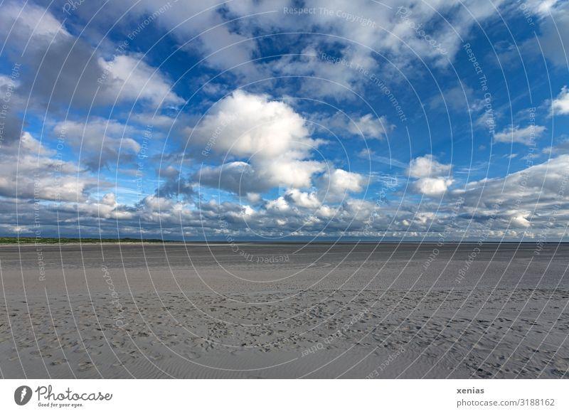 Weite am Strand Himmel Ferien & Urlaub & Reisen Natur blau weiß Landschaft Wolken Einsamkeit ruhig Ferne Küste Freiheit braun Horizont Wetter