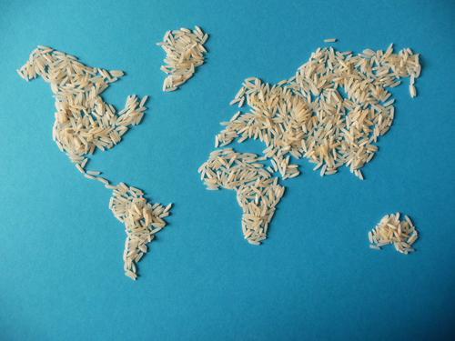 Weltkarte aus Reis blau Lebensmittel Essen Umwelt Erde Kreativität Papier Idee Klima viele graphisch Landkarte Korn Appetit & Hunger Umweltschutz Globus