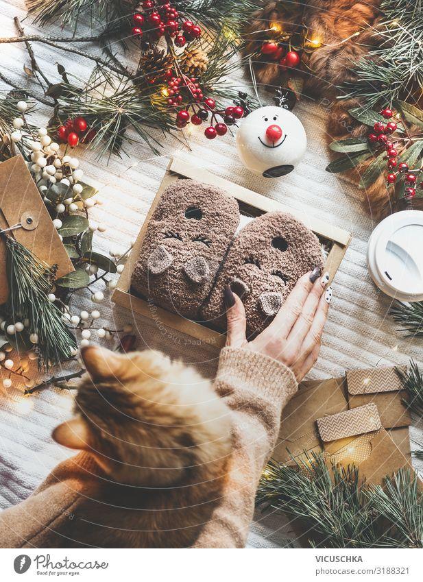 Gemütliche Weihnachtsstimmung mit Katze und Geschenk Frau Mensch Weihnachten & Advent Hand Freude Winter Lifestyle Erwachsene Feste & Feiern Stil