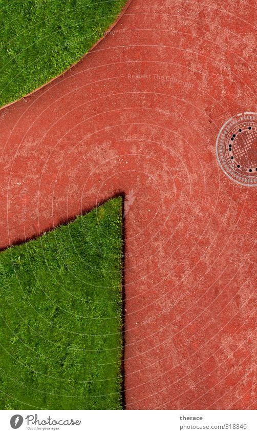 Barockrasen Natur grün rot Landschaft ruhig Umwelt Wiese Gras Wege & Pfade 1 Garten Park Erfolg laufen Rasen Ziffern & Zahlen
